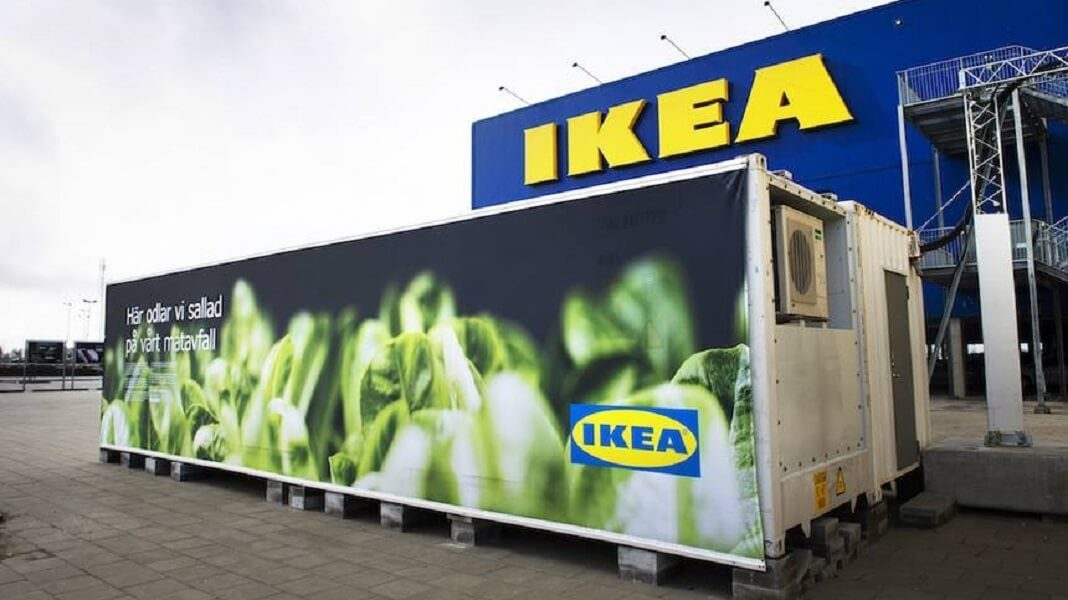 IKEA Is So Vegan It's Growing Salad in Shipping Containers