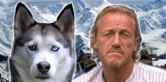 Why Vegan 'GoT' Star Jerome Flynn Doesn't Want You to Buy 'Direwolves'