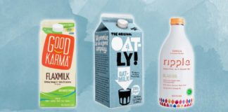 Which vegan milk has the most protein?