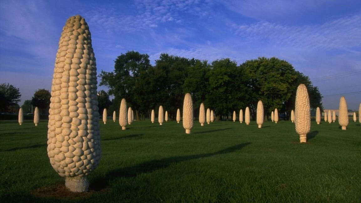 Ohio Has a 'Vegan Stonehenge' Made of Giant Corn Cobs