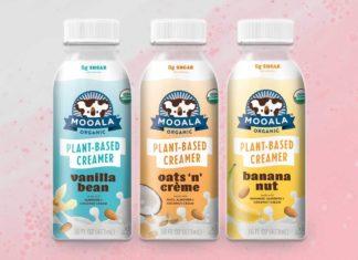 10 Vegan Coffee Creamers You Need In Your Morning Cuppa