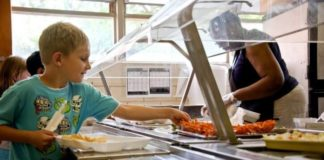 Vegan Options Become Mandatory for New Irish School Lunch Program