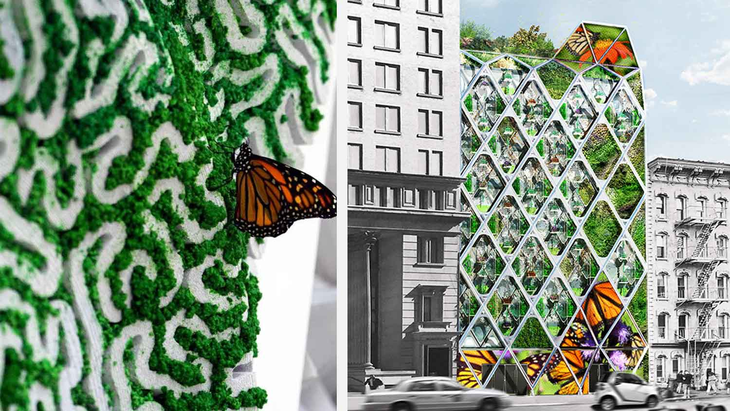 This New York Office Building Doubles As a Butterfly Sanctuary