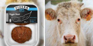 Bristol's Beef Farmers Struggle As Vegan Food Gains Popularity