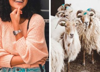 This Canadian Retailer Just Banned Cashmere From All 150 Locations