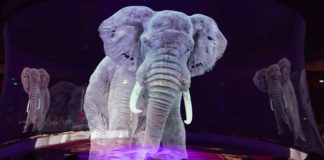 German Circus Goes Cruelty-Free With Holographic Animals