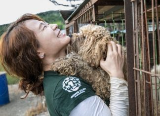 One of South Korea's Biggest Dog Meat Markets Just Shut Down