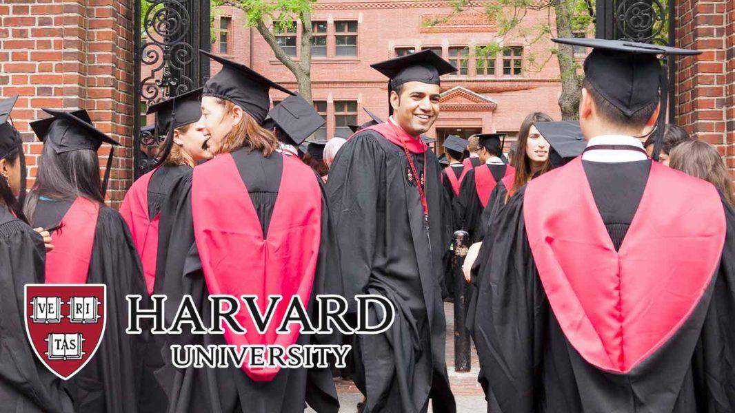 How Going to Harvard May Turn You Vegan
