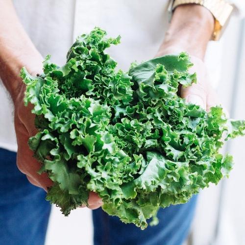 vegan-plant-based-news-kale-calcium