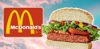 McDonald's Just Added the 'Big Vegan' Burger to Israeli Menus
