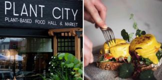 This Celeb Chef Just Opened a 10,000 Sqft Vegan 'City' in New England