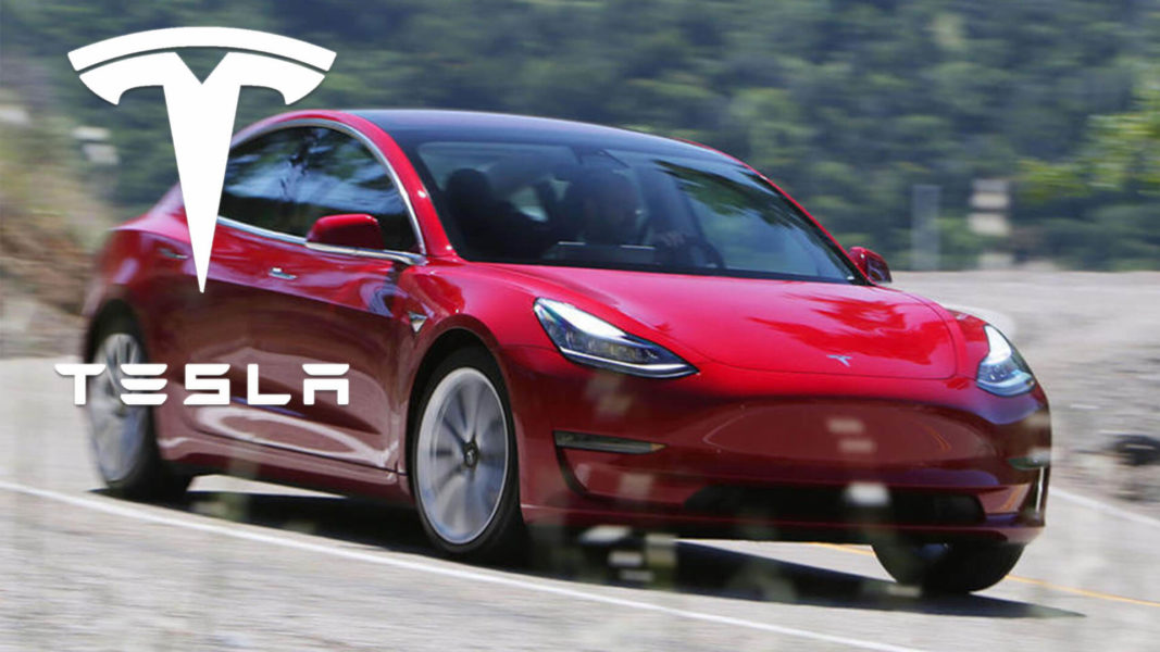 Tesla's Model 3 and Model Y Will Be Fully Vegan By 2020