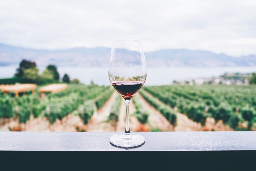 Your Wine Might Not Be Vegan. Here's Why.