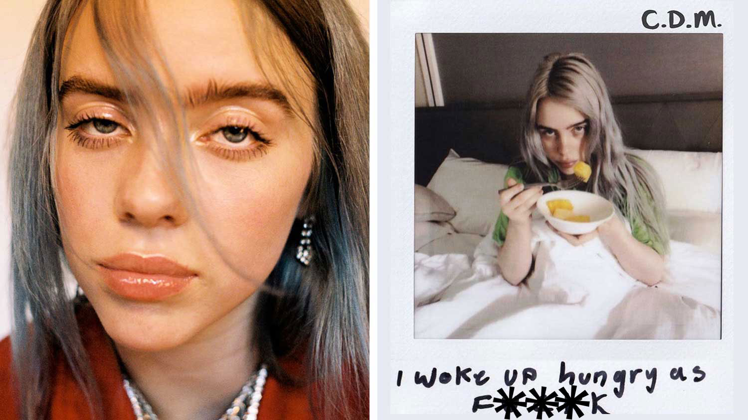 Billie Eilish Condemns Meat and Dairy Industry to 26 Million Fans