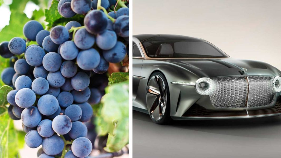 The New Electric Bentley Is Made With Vegan Grape Leather