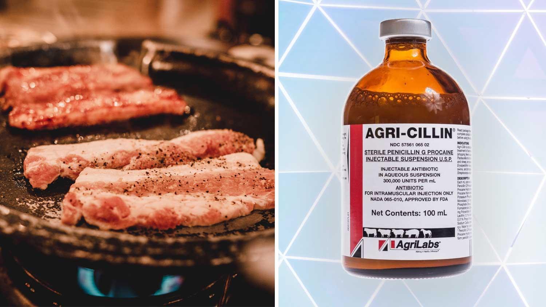 Why Big Pharma Wants You to Eat More Pork