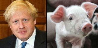 Boris Johnson's First Speech As PM Calls for Animal Welfare