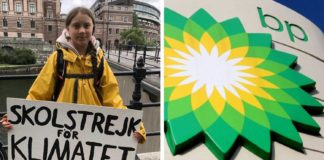 Why Big Oil Should Be Terrified of Vegan Climate Activist Greta Thunberg