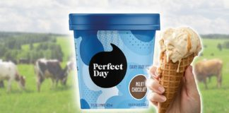 You Can Now Buy Vegan Real Dairy Ice Cream Made From Cow's Milk