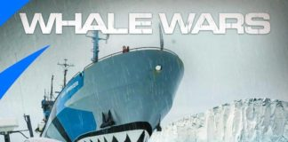 Animal Planet Exposes Whale Industry to 90 Million Households