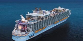 Royal Caribbean Cruises Just Launched a 3-Course Vegan Menu