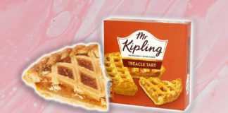 Mr Kipling Has Vegan Treacle Tarts Now