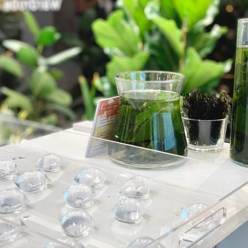 Edible Vegan Seaweed Pods Are the New Soda Bottles