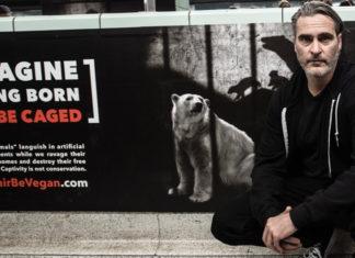 Joaquin Phoenix Leads Public Protest Against Animal Cruelty
