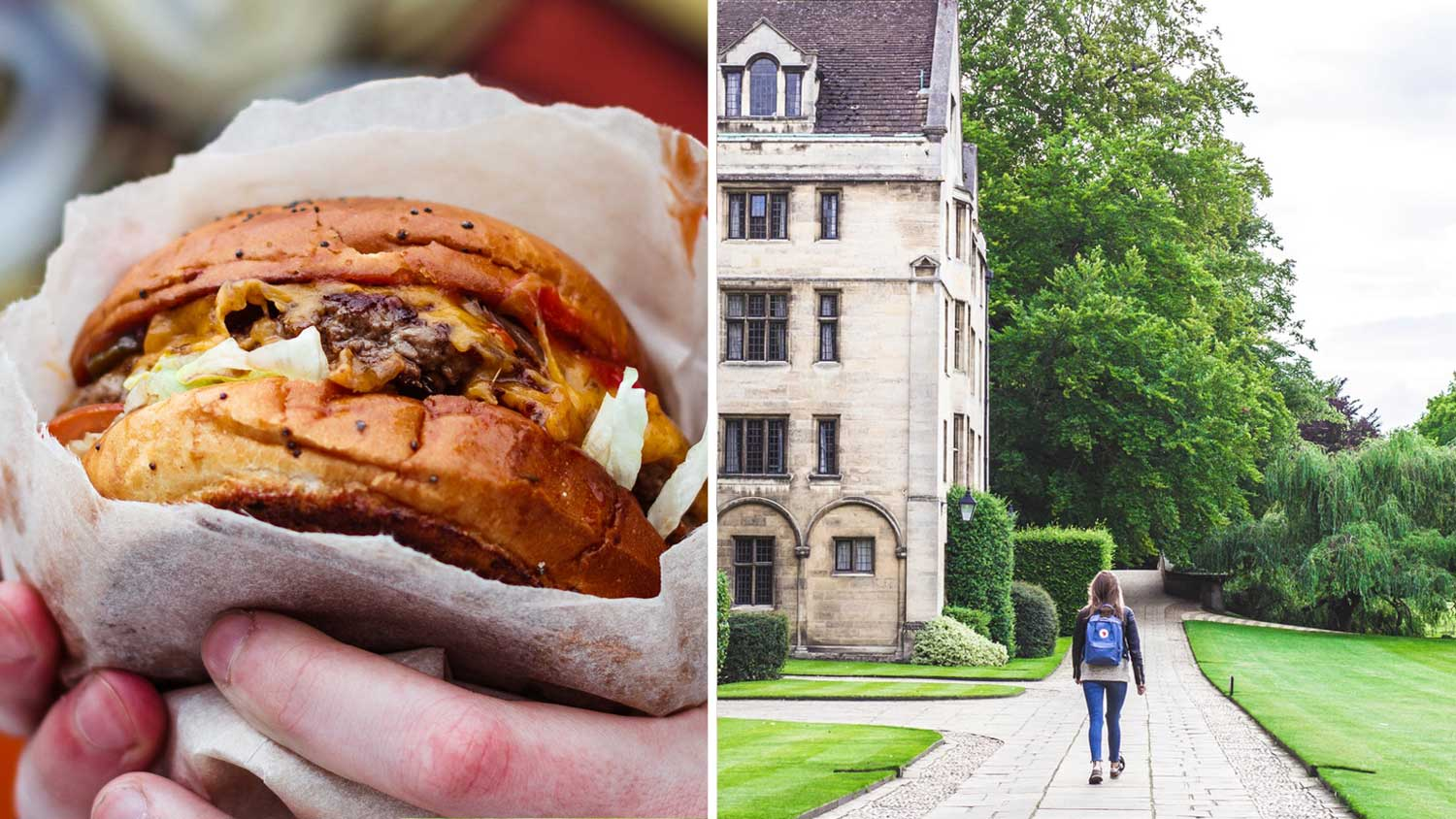 Cambridge Uni Emissions Drop 33% After Ditching Red Meat