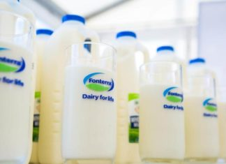 Major NZ Dairy Company Loses Millions of Dollars as Plant Milk Rises
