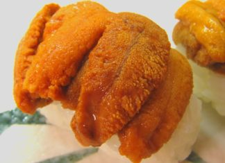 Vegan Sea Urchin Could Be the Next Big Thing In Plant-Based Seafood