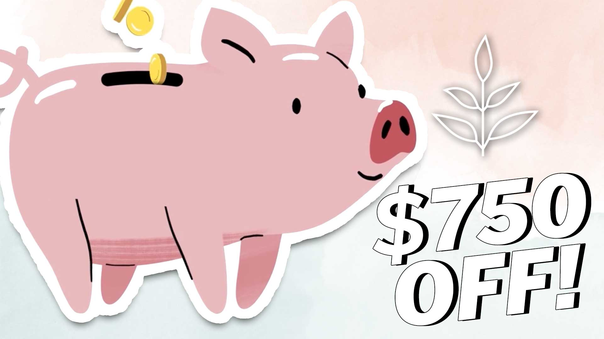 How To SAVE MONEY on a VEGAN DIET