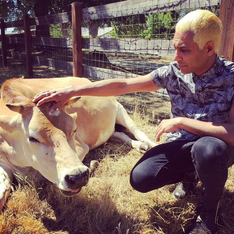 Did You Know These 21 Musicians Are All Vegan?