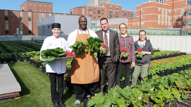 Boston Hospital Feeds Patients From Its Rooftop Vegetable Garden