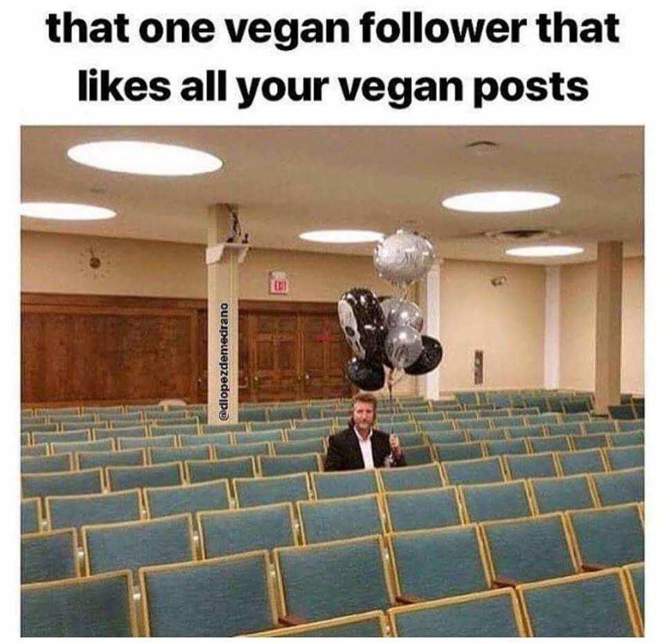 Best Vegan Memes