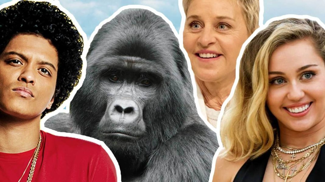 Bruno Mars Just Teamed Up With Ellen and Miley to Save Gorillas
