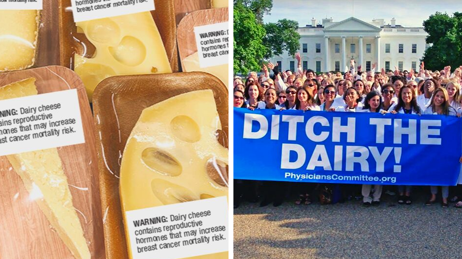 12,000 Doctors Just Urged the FDA to Put Cancer Warnings on Cheese
