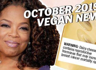 The Top 11 Plant-Based News Stories for October
