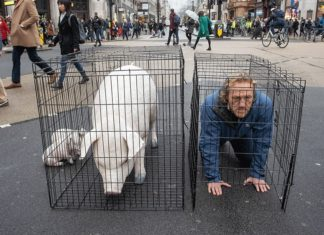 GoT Star Jerome Flynn Gets In a Cage Just Like Your Bacon