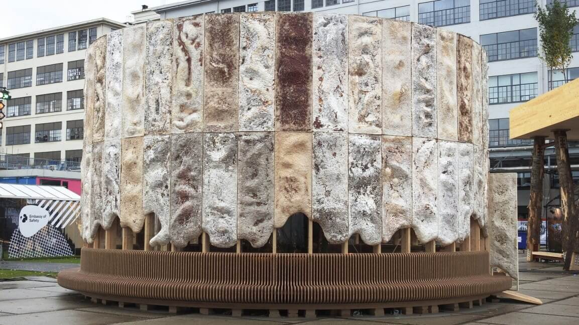 This New Building Is Made From Mushrooms That Actually Clean the Air