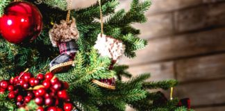 9 Sustainable Alternatives to Christmas Trees