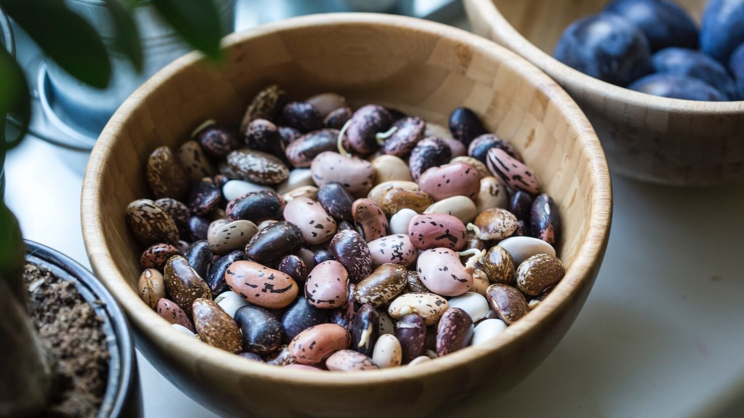 Eating Legumes on a Vegan Diet: Everything You Need to Know