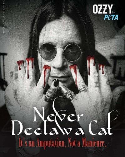 ozzy osbourne cat declawing