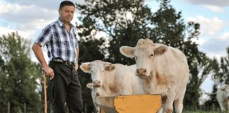 Ireland's Beef Industry May Not Recover From Coronavirus