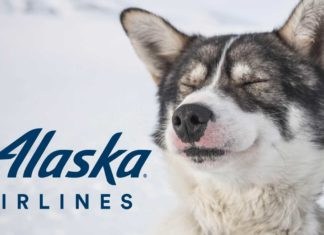 Alaska Airlines Ends 40-Year Sponsorship of the Iditarod