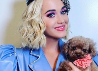 Pregnant Katy Perry Ditches Beef for Impossible Burgers