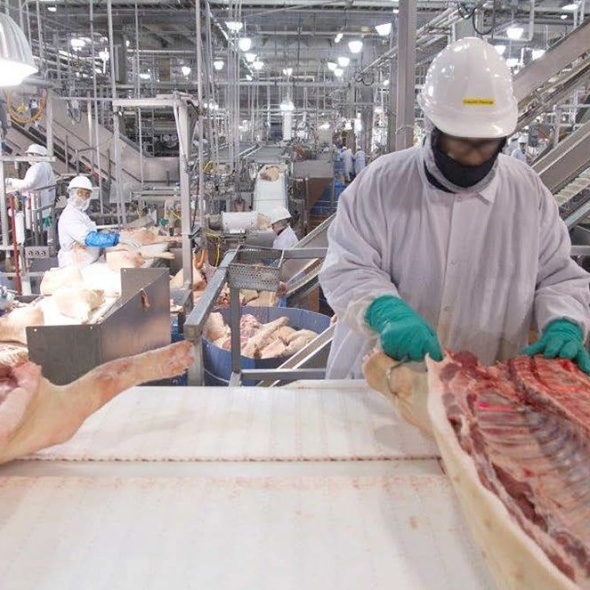 The Meat Industry Kills In More Ways Than You Think