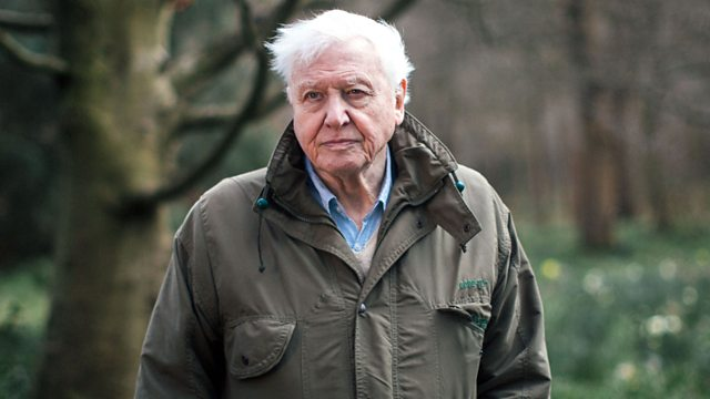 David Attenborough Is Teaching Kids About Wildlife Online