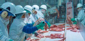 Hundreds of Slaughterhouse Workers Test Positive for Coronavirus