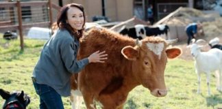 Why Struggling Dairy Farmers Are Transitioning to Vegan Milk Production